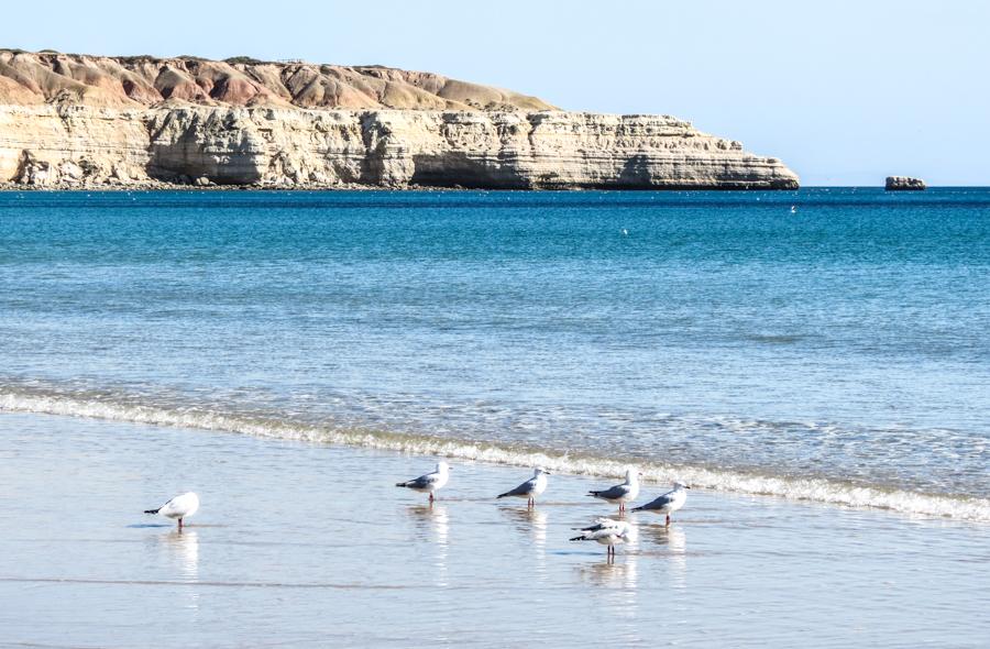 Coastal SA 9.jpg