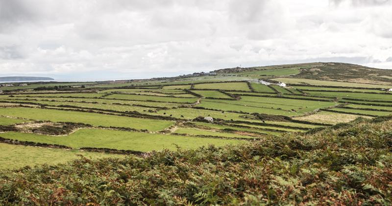 Wales-30.jpg