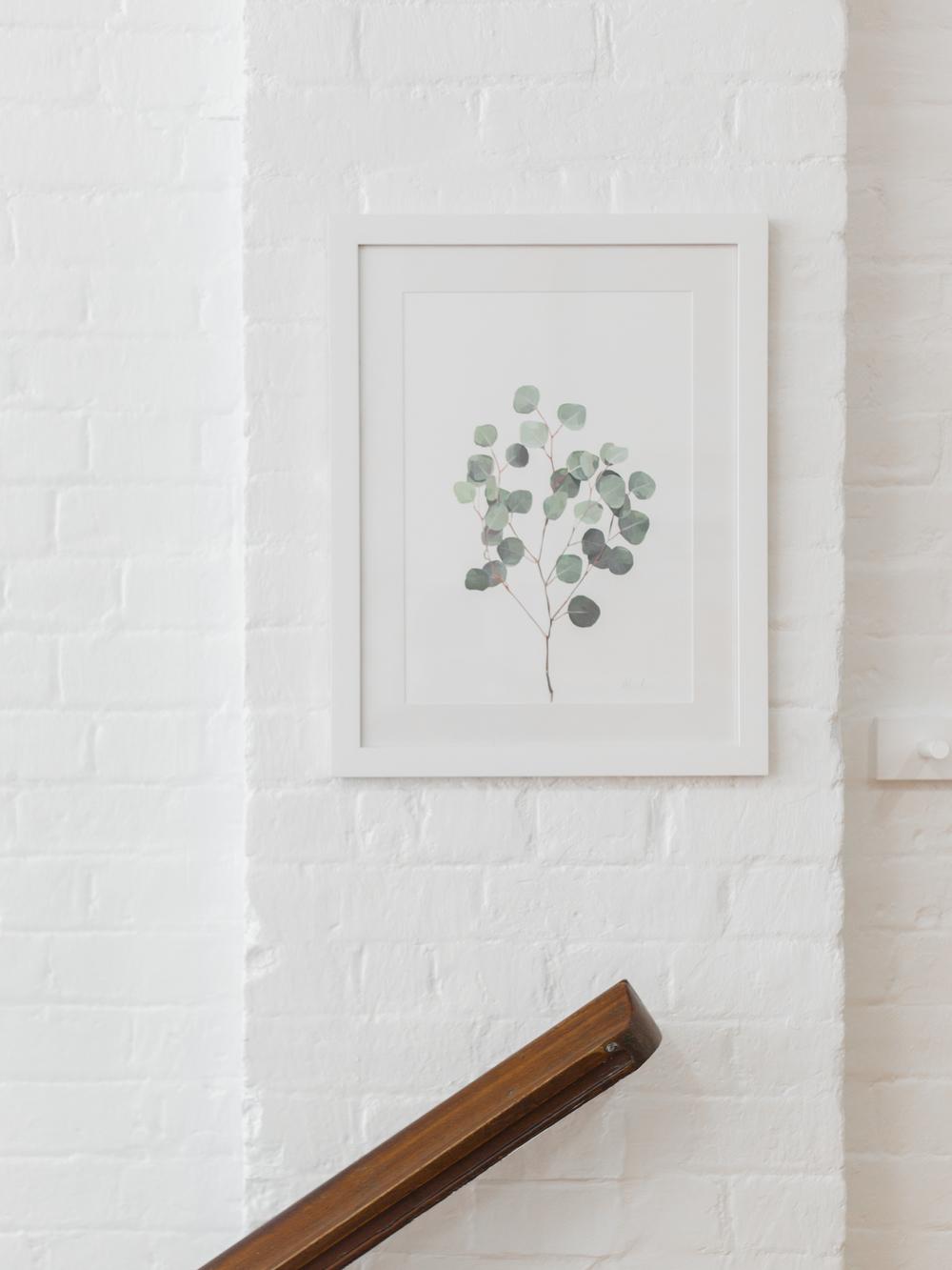 lambie-and-co-australian-botanical-print.jpg