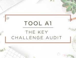 Free Business Assessment Tool 1.jpg
