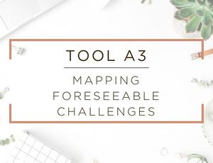 Free Business Assessment Tool 3.jpg