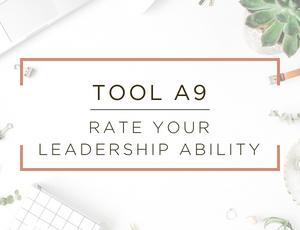 Free Business Assessment Tool 9.jpg