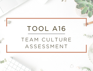 Free Business Assessment Tool 16.jpg