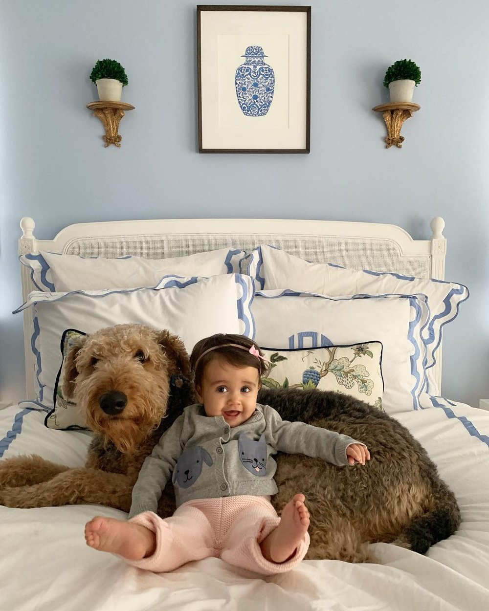What I've been up to — dog, baby, house
