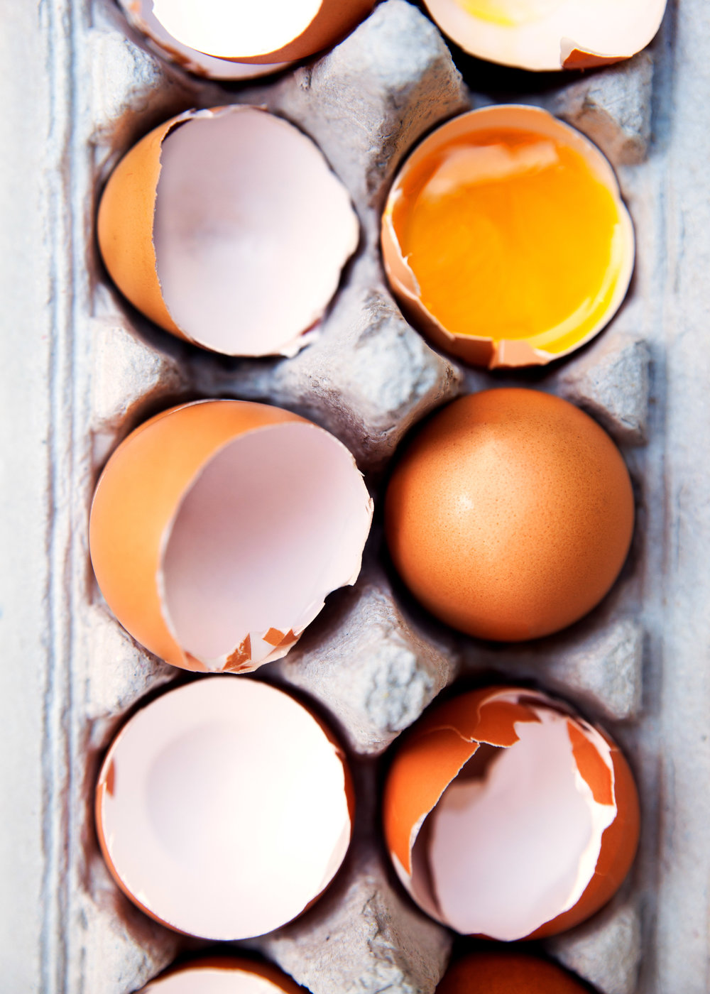 Eggs!!! Web.jpg