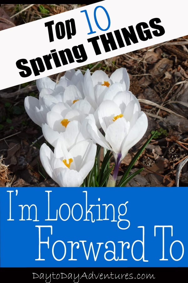 10 Spring Things I'm looking forward to - DaytoDayAdventures.com