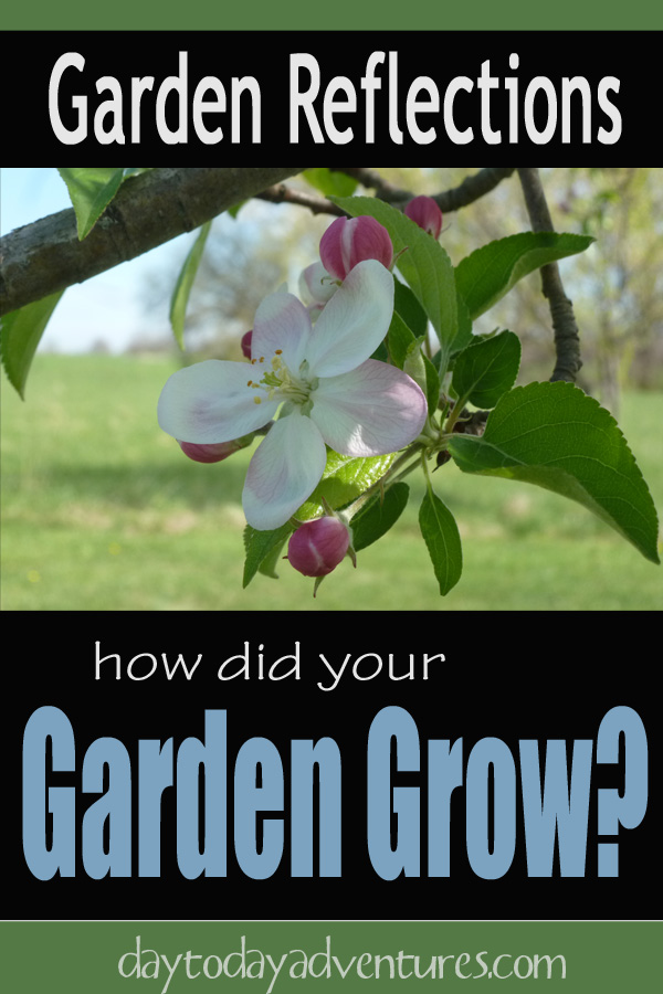 Looking back at how your garden did in years past helps to make decisions for the current year - DaytoDayAdventures.com