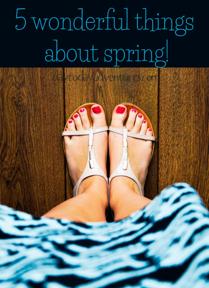 5 wonderful things about SPRING! - DaytoDayAdventures.com