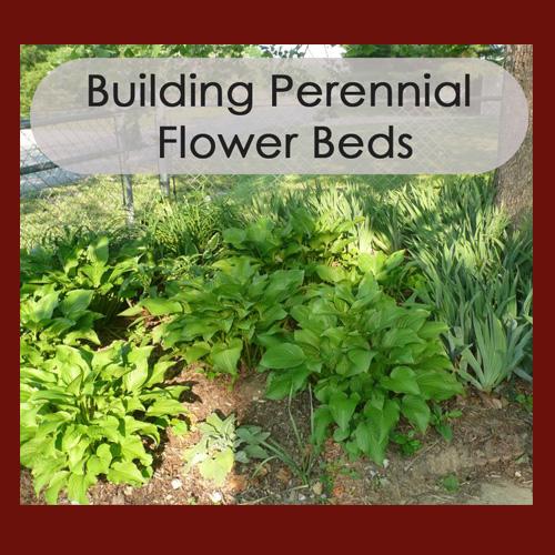 Building Perennial Flower Beds - DaytoDayAdventures.com
