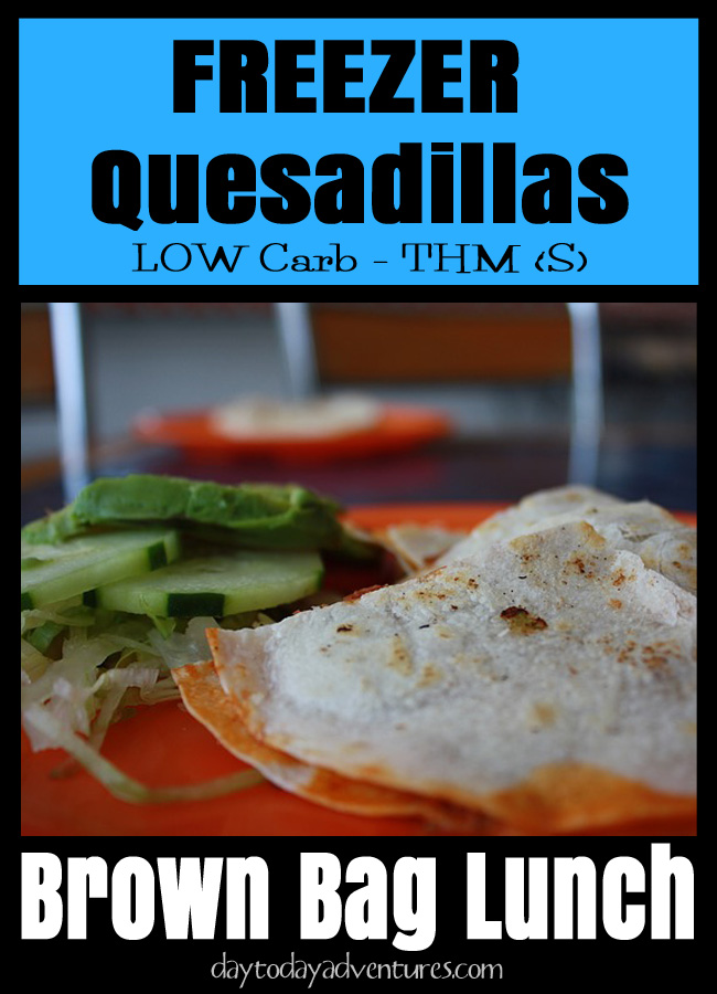Need a fast easy meal?  Make these low carb chicken quesidillas!  -  DaytoDayAdventures.com