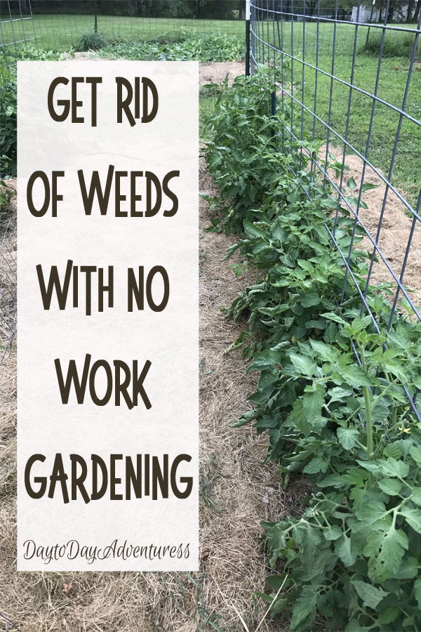 Get rid of weeds with no work gardening.  Really.  You can spend less time pulling weeds!
