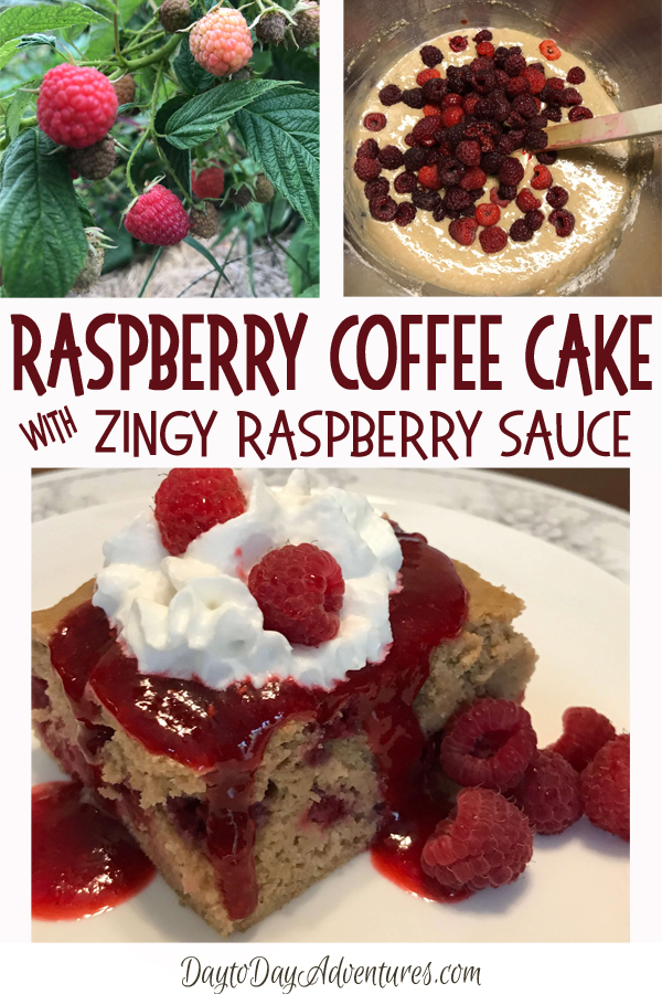 Sugar-free Raspberry Coffee Cake with Zingy Rasperry Sauce.  It's like a song in your mouth!