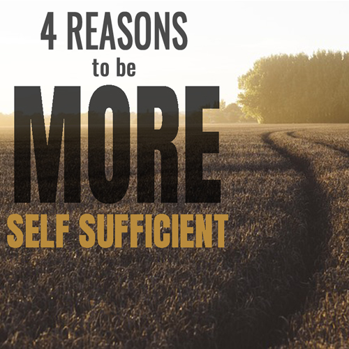 4 reasons self sufficient.jpg