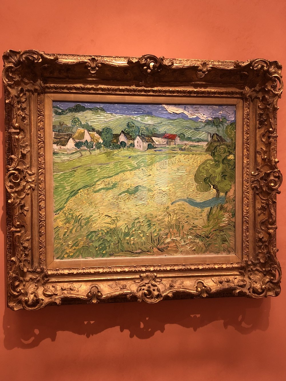 Vincent Van Gogh  Les Vessenots in Auvers, 1890