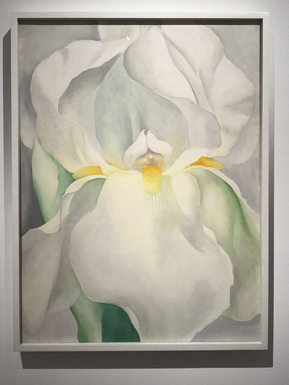Georgia O'Keefe  White Iris No.7, 1957