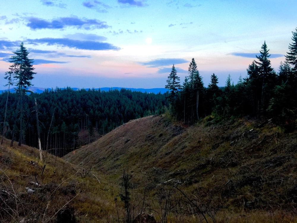 Post Canyon vista view