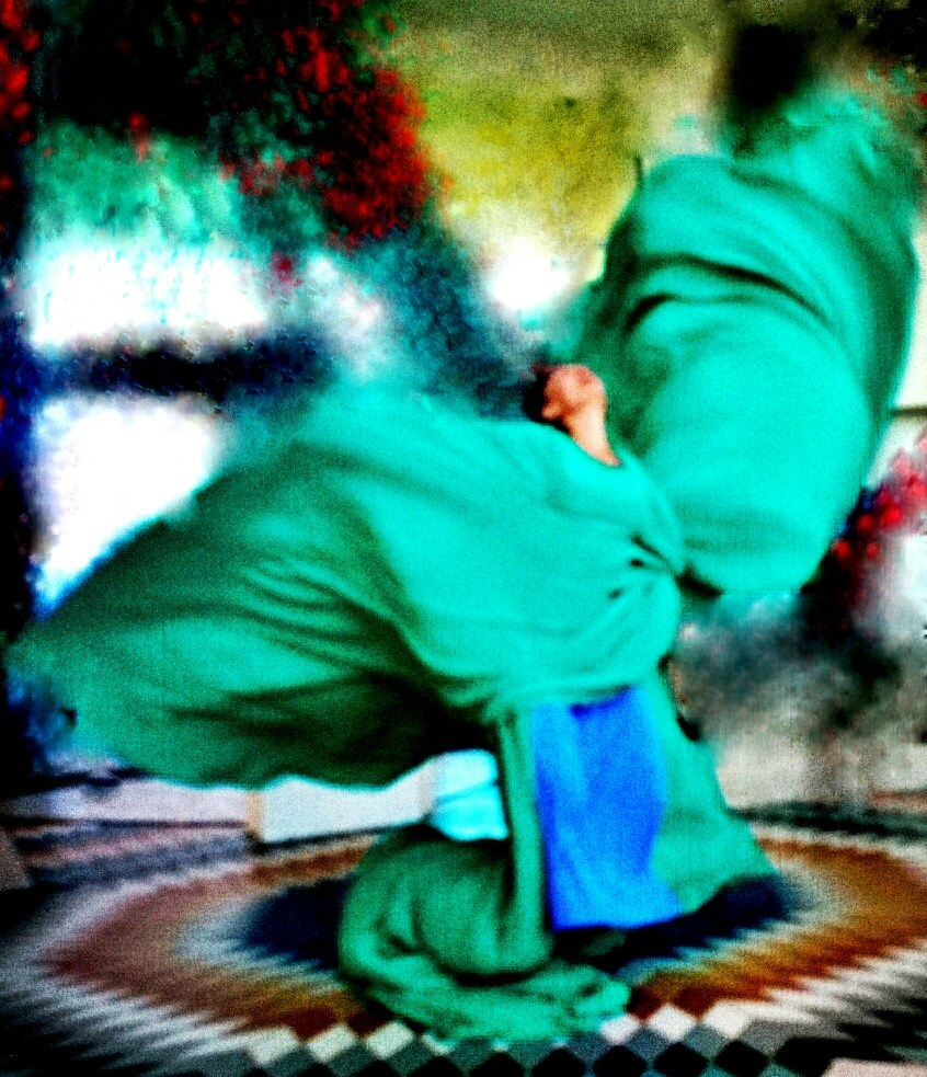 Robin Poitras and the Turtle Island Silk Dance     Photo: Lani Elliot