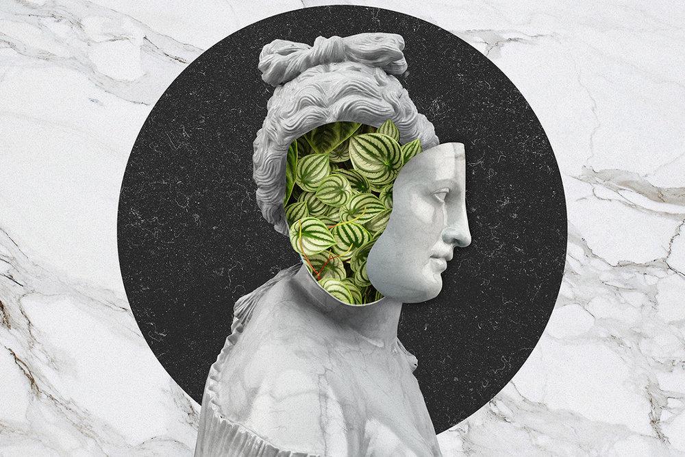 Venus Portal