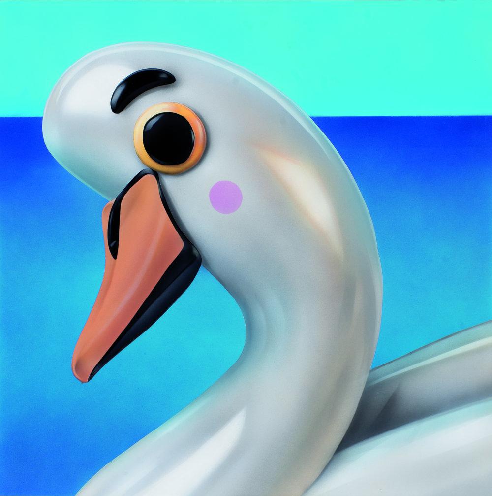swan R.jpg