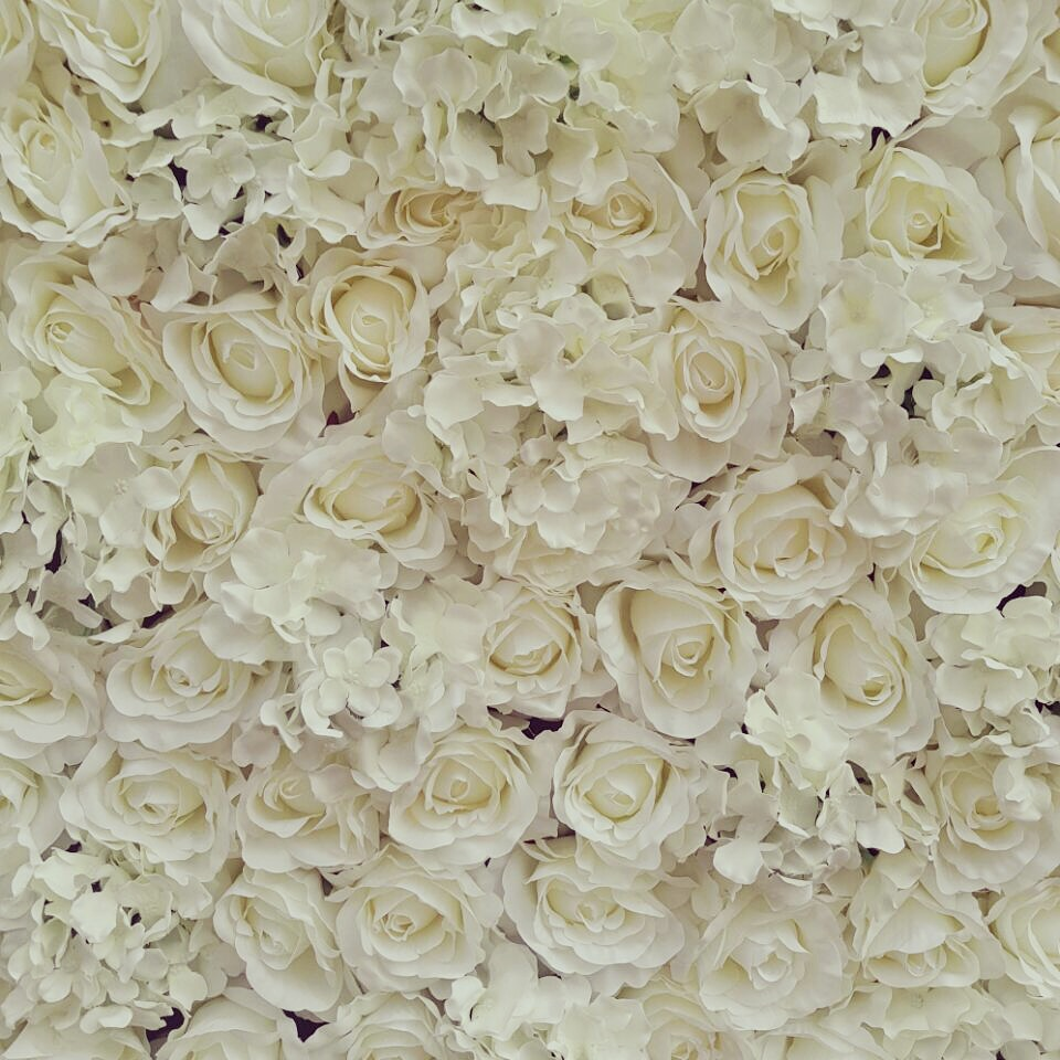 White Rose Backdrop.JPG