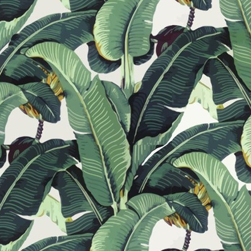 Banana Leaf Backdrop