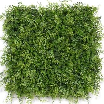 Fern-Leaf.jpg