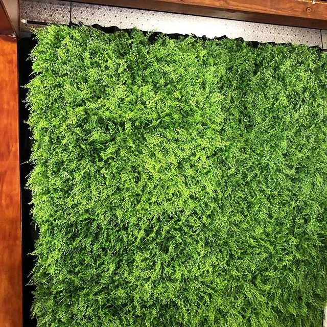 Loving our NEW lush green garden wall backdrop, it makes your photo POP 💫