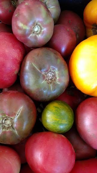 tomatoes_heirloom.jpg