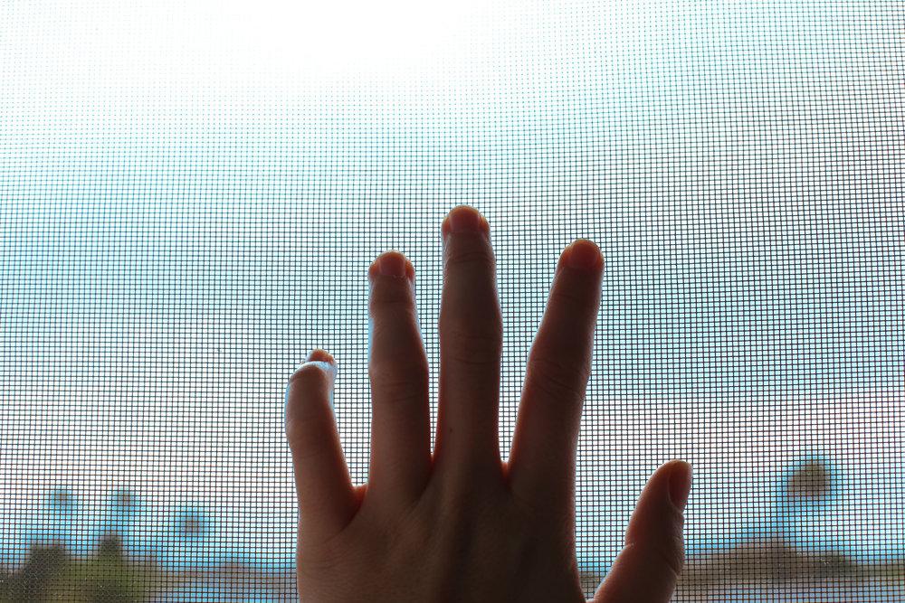hand-screen.jpg