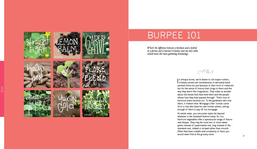 Burpee10.jpg