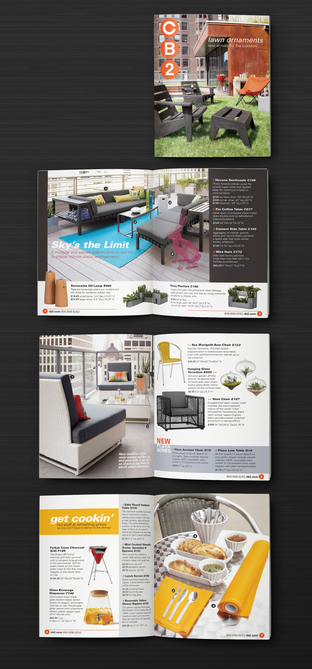 CB2 Catalog Design