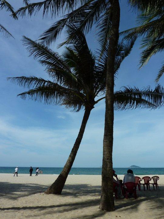 Podczas odpoczynku pod palmami proponowany jest prosto z drzewa kokos.
