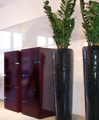 plants3-330x400.jpg
