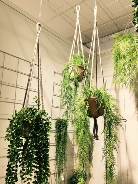 Macrame hanging baskets are back!