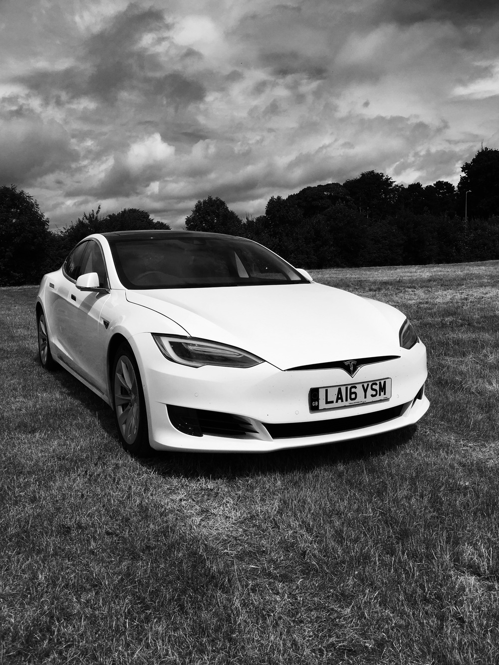 white-car tesla