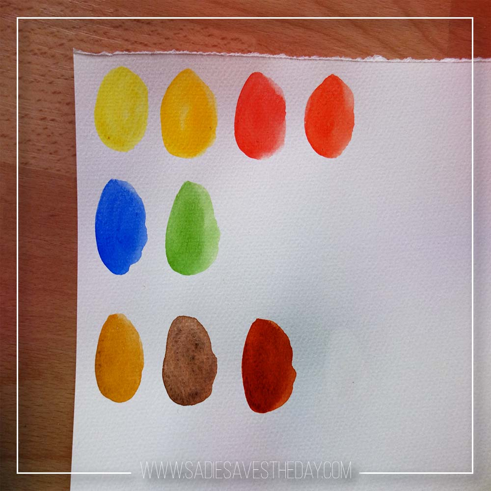 art supply review winsor and newton cotman compact set watercolors