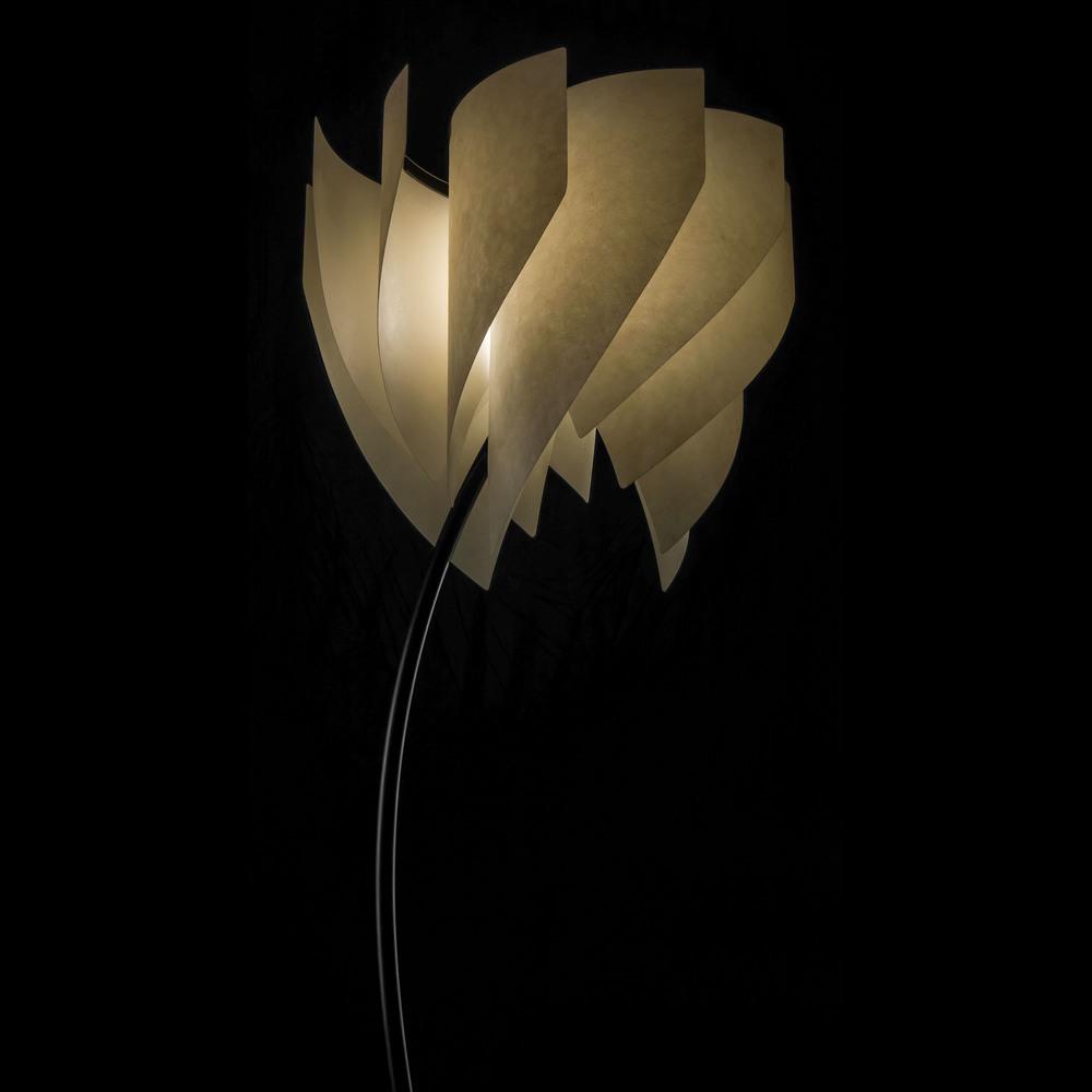 Coriolis-03-SQ.jpg