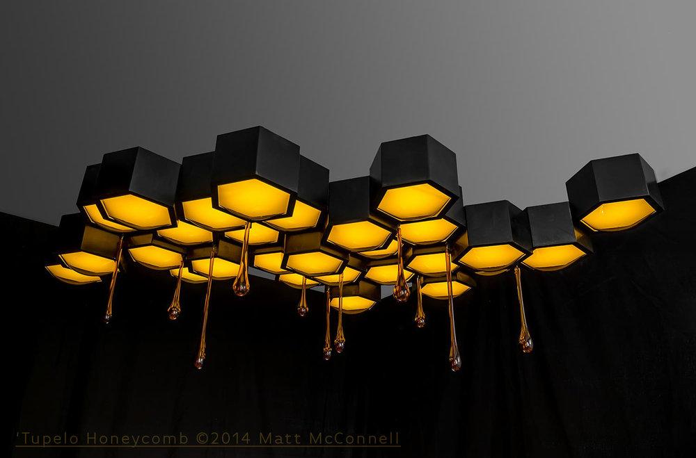 Tupelo Honeycomb - ©2014 Matt McConnell-2.jpg