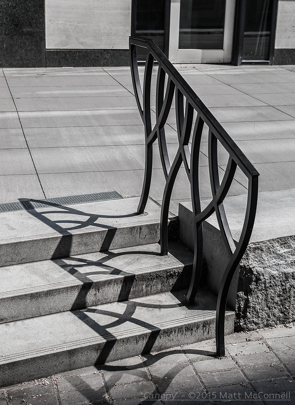 'Canopy'-©2015 Matt McConnell-7.jpg