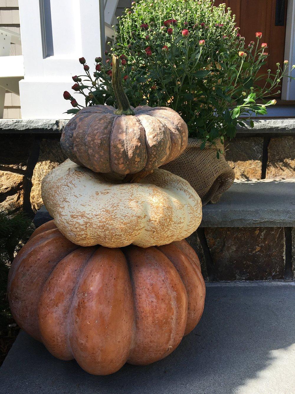 Terrain Pumpkin Stack
