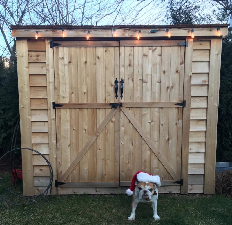 Bulldog Santa Lilies and Lambs