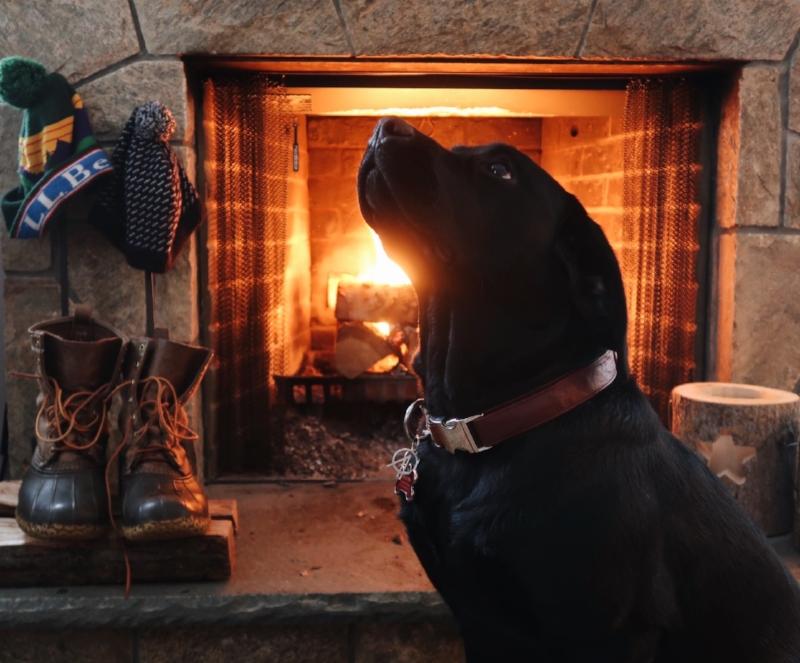 { A Fireside Georgia. }