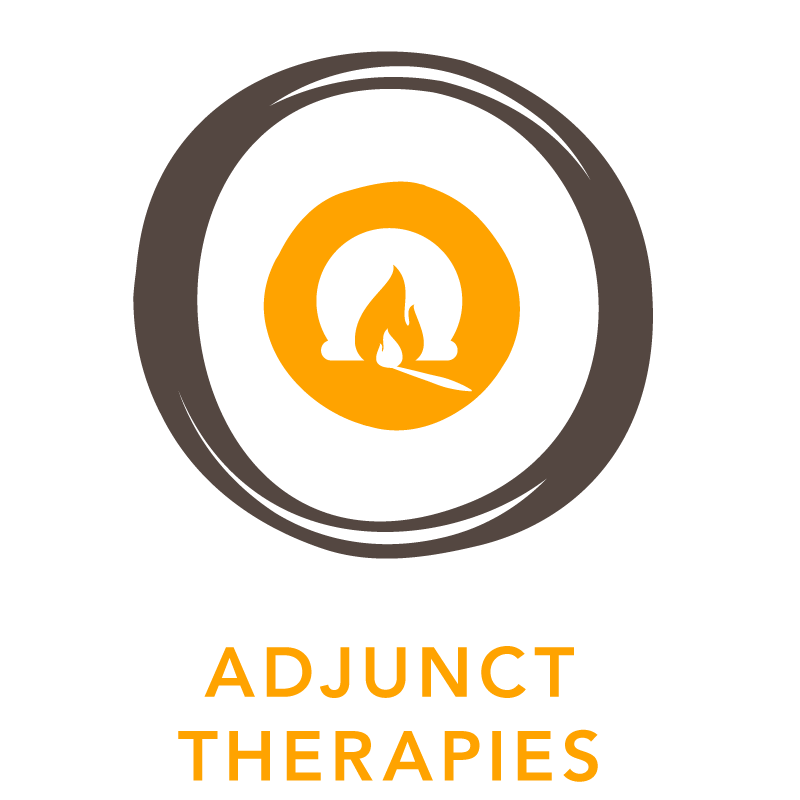 Truvotion_icon_yellow_adjunct_therapies.png