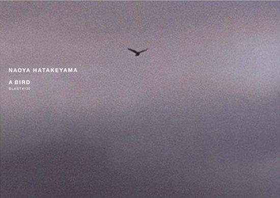 Naoya Hatakeyama, A Bird