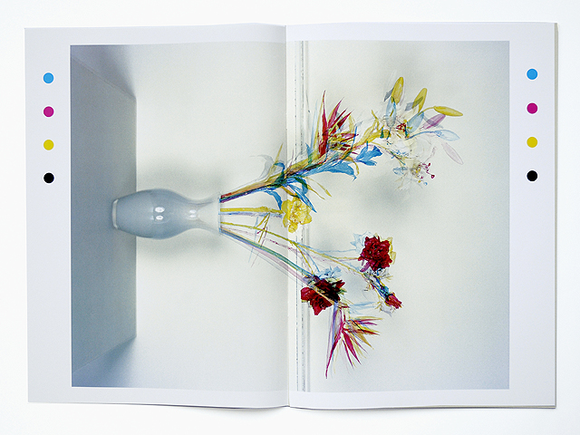 Jaap Scheeren,  Fake Flowers in Full Colour