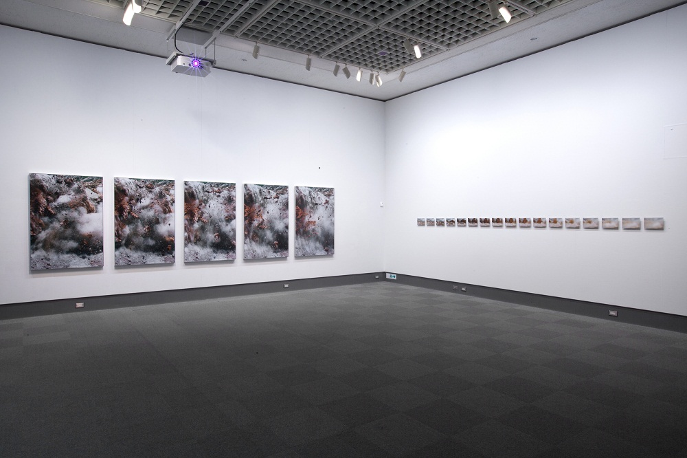 Installation view,  Natural Stories