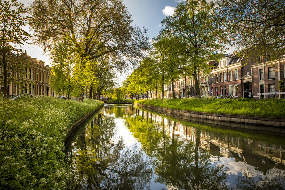 Reflections in Utrecht