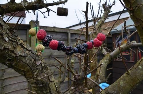 Berry Bird Feeder