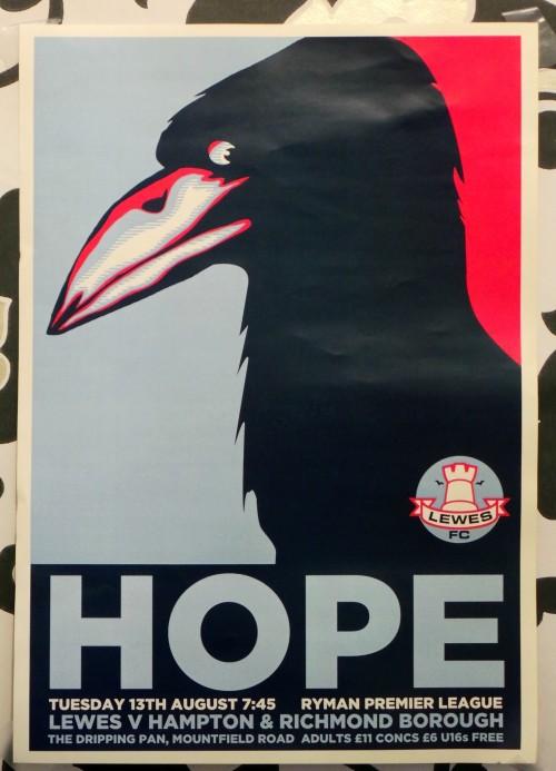 Lewes FC Hope