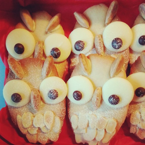 Christmas Owl Biscuits